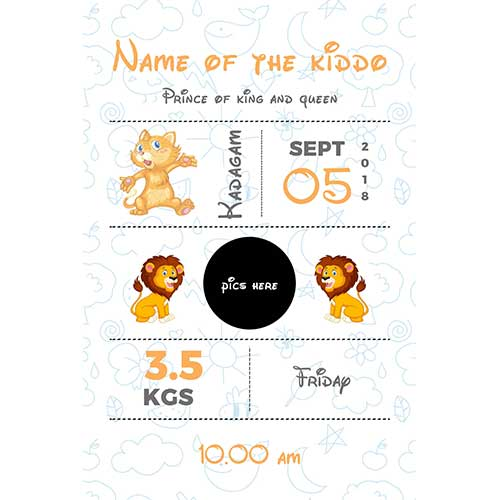Baby Birth Details Frame
